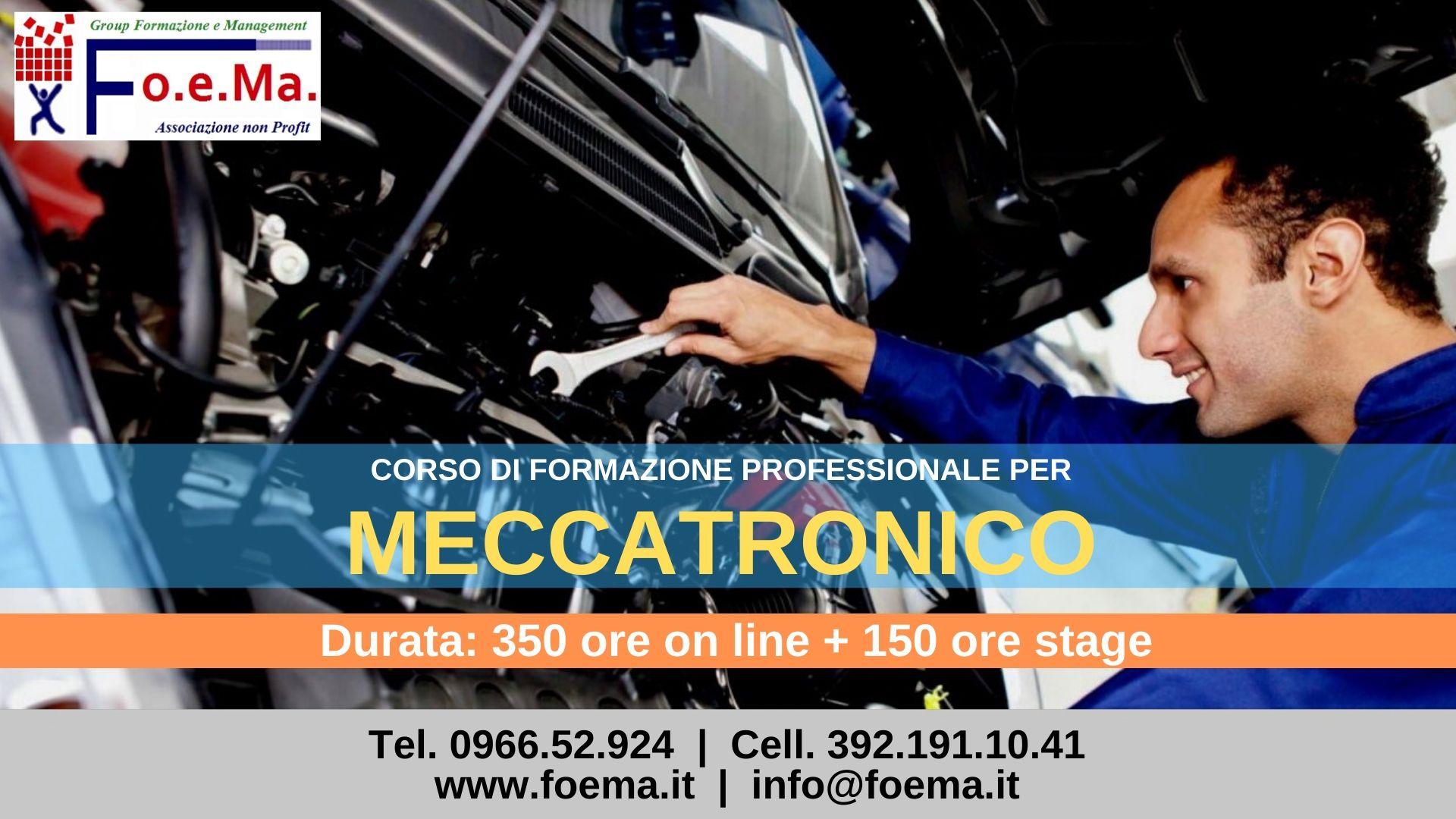 Meccatronico Image